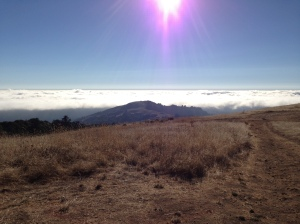 Fog covering the lowlands all the way to Monterey Bay.