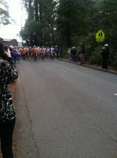 Starting line at Quad Dipsea.