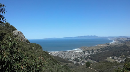 The view from this trail, from Coastal Trail Runs' website.