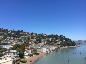 Gorgeous day in Sausalito.