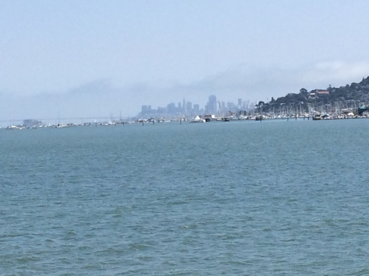 The San Francisco skyline from a different vantage point.