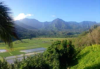 Hanalei Valley Lookout.