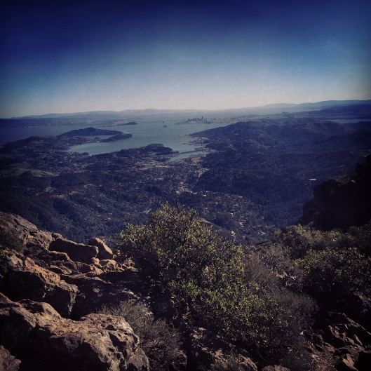 Perfect day on Mt Tam!